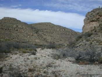 canyon rattlesnake carlsbad