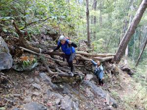 natuur trail