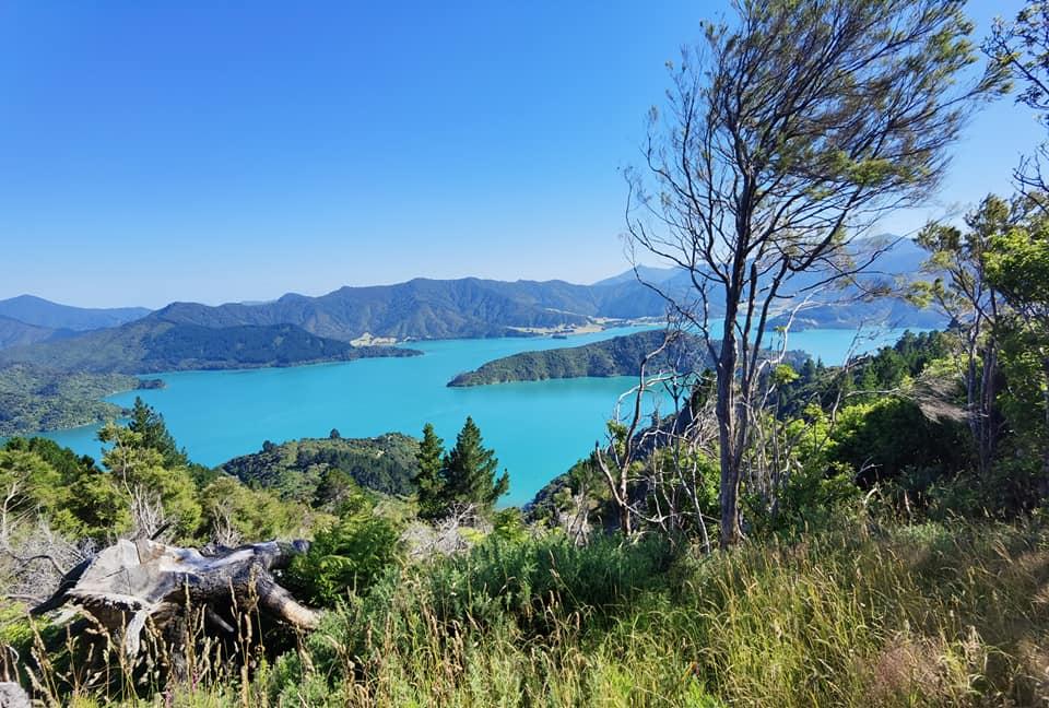 Hiking in Nieuw-Zeeland zolang ik daar ben met lockdown