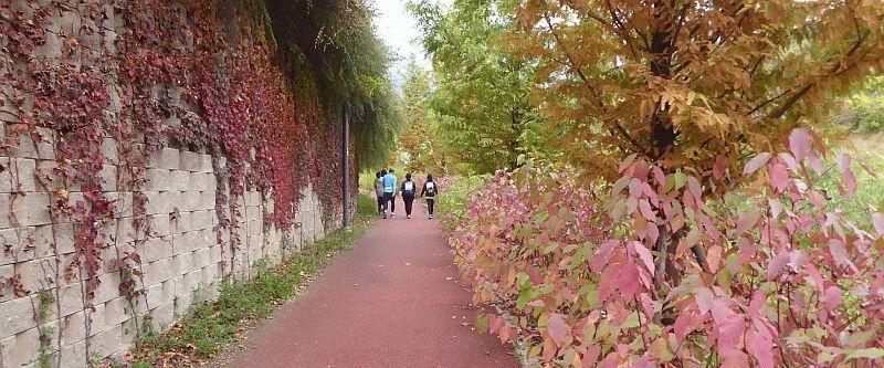 Herfst kleuren Taipei Taiwan